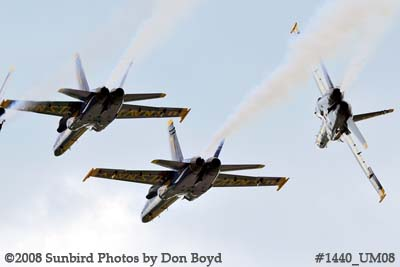 The Blue Angels at the 2008 Great Tennessee Air Show practice show at Smyrna aviation stock photo #1440