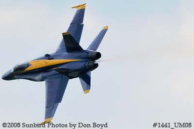 A Blue Angel at the 2008 Great Tennessee Air Show practice show at Smyrna aviation stock photo #1441