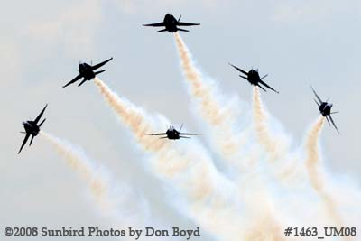 The Blue Angels at the 2008 Great Tennessee Air Show practice show at Smyrna aviation stock photo #1463