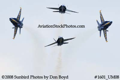 The Blue Angels at the 2008 Great Tennessee Air Show practice show at Smyrna aviation stock photo #1601