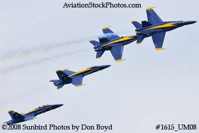 The Blue Angels at the 2008 Great Tennessee Air Show practice show at Smyrna aviation stock photo #1615