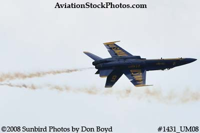 The Blue Angels at the 2008 Great Tennessee Air Show practice show at Smyrna aviation stock photo #1431