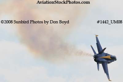 A solo Blue Angel at the 2008 Great Tennessee Air Show practice show at Smyrna aviation stock photo #1442
