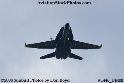 The Blue Angels at the 2008 Great Tennessee Air Show practice show at Smyrna aviation stock photo #1446