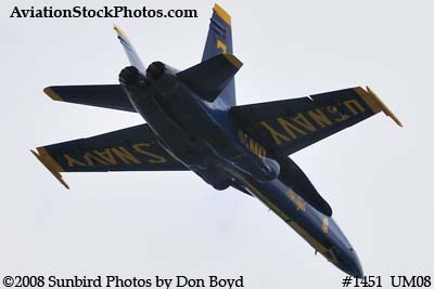 A solo Blue Angel at the 2008 Great Tennessee Air Show practice show at Smyrna aviation stock photo #1451
