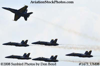 The Blue Angels at the 2008 Great Tennessee Air Show practice show at Smyrna aviation stock photo #1473
