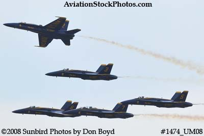 The Blue Angels at the 2008 Great Tennessee Air Show practice show at Smyrna aviation stock photo #1474