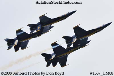The Blue Angels at the 2008 Great Tennessee Air Show practice show at Smyrna aviation stock photo #1557