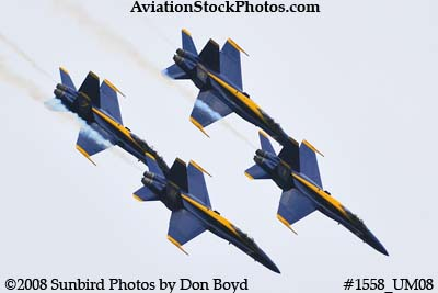 The Blue Angels at the 2008 Great Tennessee Air Show practice show at Smyrna aviation stock photo #1558