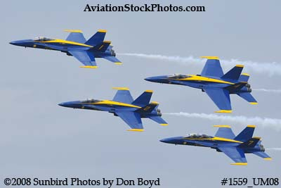 The Blue Angels at the 2008 Great Tennessee Air Show practice show at Smyrna aviation stock photo #1559
