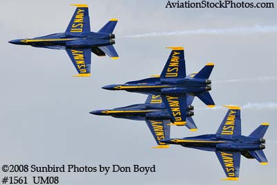 The Blue Angels at the 2008 Great Tennessee Air Show practice show at Smyrna aviation stock photo #1561