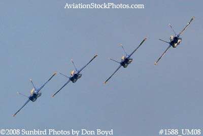 The Blue Angels at the 2008 Great Tennessee Air Show practice show at Smyrna aviation stock photo #1588