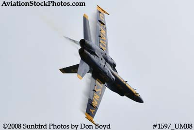 The Blue Angels at the 2008 Great Tennessee Air Show practice show at Smyrna aviation stock photo #1597