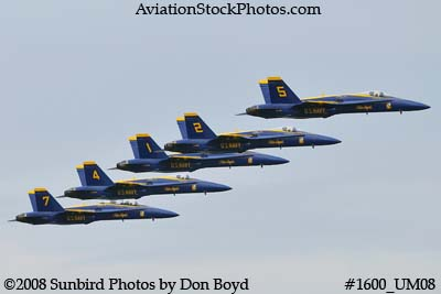 The Blue Angels at the 2008 Great Tennessee Air Show practice show at Smyrna aviation stock photo #1600