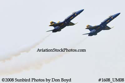The two Blue Angels solo pilots at the 2008 Great Tennessee Air Show practice show at Smyrna aviation stock photo #1608