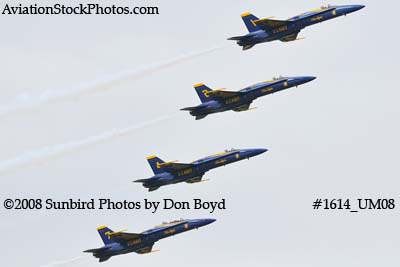 The Blue Angels at the 2008 Great Tennessee Air Show practice show at Smyrna aviation stock photo #1614
