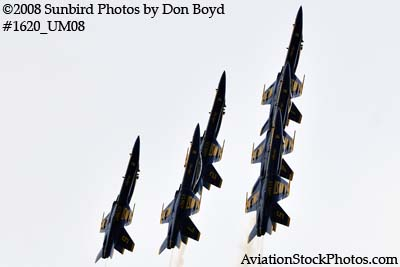 The Blue Angels at the 2008 Great Tennessee Air Show practice show at Smyrna aviation stock photo #1620