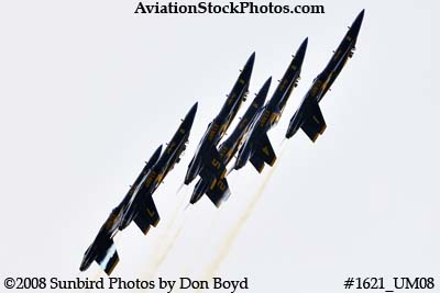 The Blue Angels at the 2008 Great Tennessee Air Show practice show at Smyrna aviation stock photo #1621