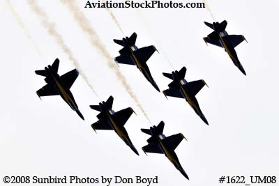 The Blue Angels at the 2008 Great Tennessee Air Show practice show at Smyrna aviation stock photo #1622