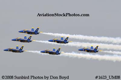 The Blue Angels at the 2008 Great Tennessee Air Show practice show at Smyrna aviation stock photo #1623