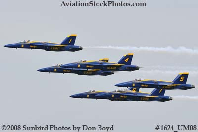The Blue Angels at the 2008 Great Tennessee Air Show practice show at Smyrna aviation stock photo #1624