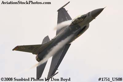 USAF F-16 East Coast Demo at the Great Tennessee Air Show at Smyrna aviation stock photo #1751