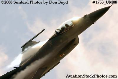 USAF F-16 East Coast Demo at the Great Tennessee Air Show at Smyrna aviation stock photo #1753
