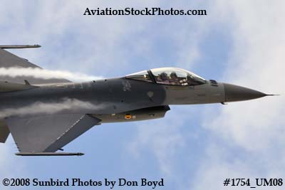 USAF F-16 East Coast Demo at the Great Tennessee Air Show at Smyrna aviation stock photo #1754