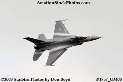 USAF F-16 East Coast Demo at the Great Tennessee Air Show at Smyrna aviation stock photo #1757