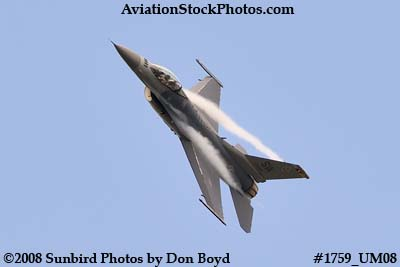 USAF F-16 East Coast Demo at the Great Tennessee Air Show at Smyrna aviation stock photo #1759