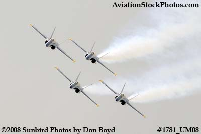 The Blue Angels at the 2008 Great Tennessee Air Show at Smyrna aviation stock photo #1781