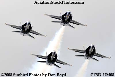 The Blue Angels at the 2008 Great Tennessee Air Show at Smyrna aviation stock photo #1783