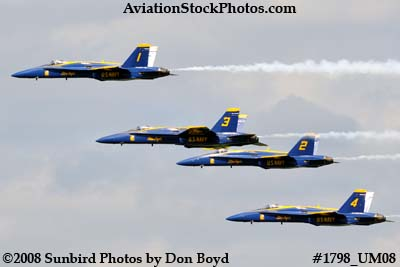 The Blue Angels at the 2008 Great Tennessee Air Show at Smyrna aviation stock photo #1798