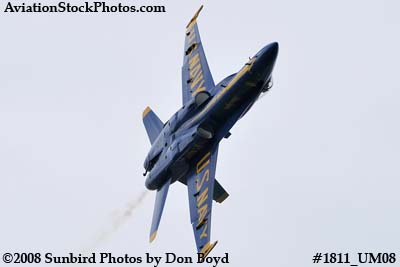 One of the Blue Angels at the 2008 Great Tennessee Air Show at Smyrna aviation stock photo #1811