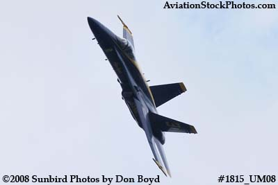 One of the Blue Angels at the 2008 Great Tennessee Air Show at Smyrna aviation stock photo #1815