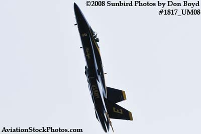 One of the Blue Angels at the 2008 Great Tennessee Air Show at Smyrna aviation stock photo #1817