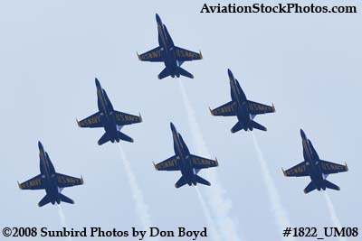 The Blue Angels at the 2008 Great Tennessee Air Show at Smyrna aviation stock photo #1822