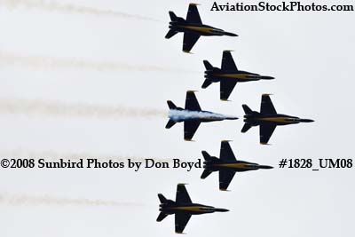 The Blue Angels at the 2008 Great Tennessee Air Show at Smyrna aviation stock photo #1828
