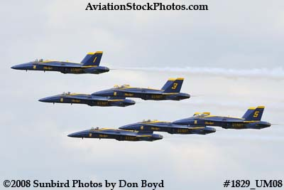 The Blue Angels at the 2008 Great Tennessee Air Show at Smyrna aviation stock photo #1829