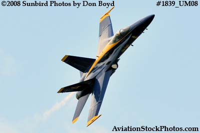 One of the Blue Angels at the 2008 Great Tennessee Air Show at Smyrna aviation stock photo #1839