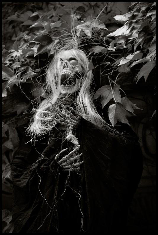 New York Ghoul