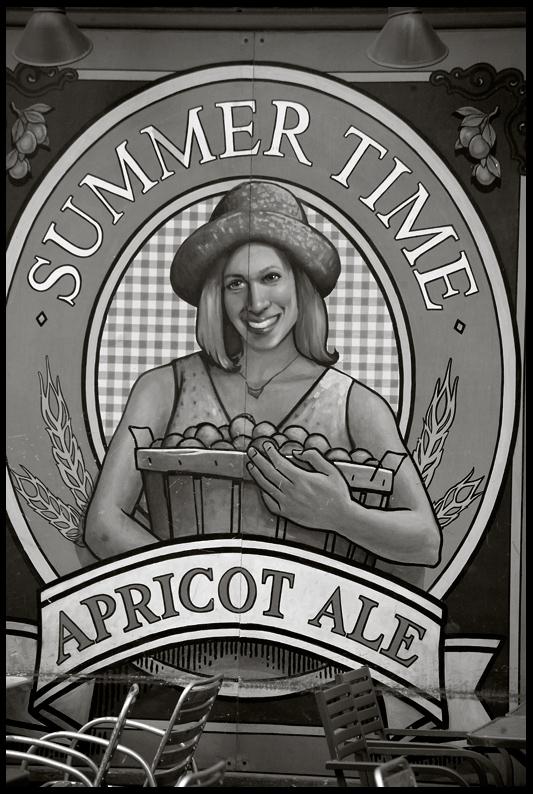 Apricot Ale