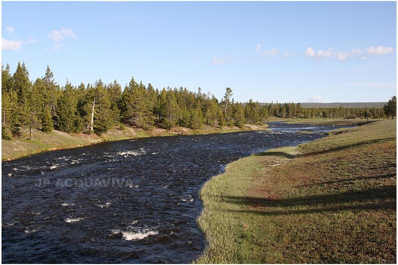 rivière Firehole 3.JPG
