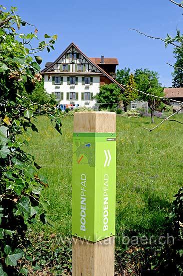 Bodenpfad (94636)
