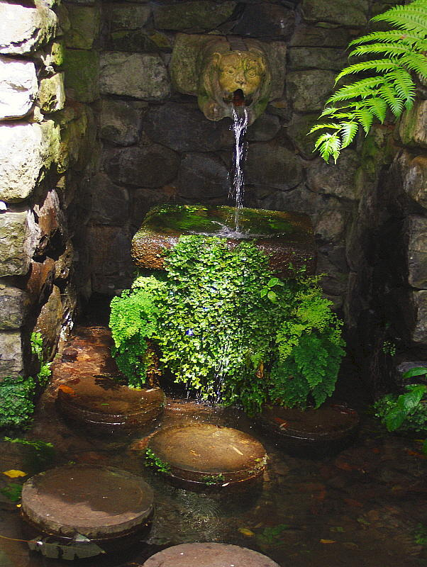 A WATER FEATURE . 1   789