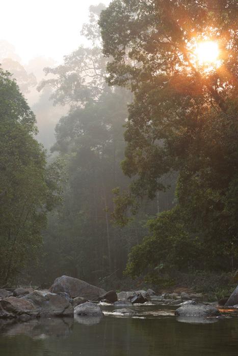 Sg Selai sunrise