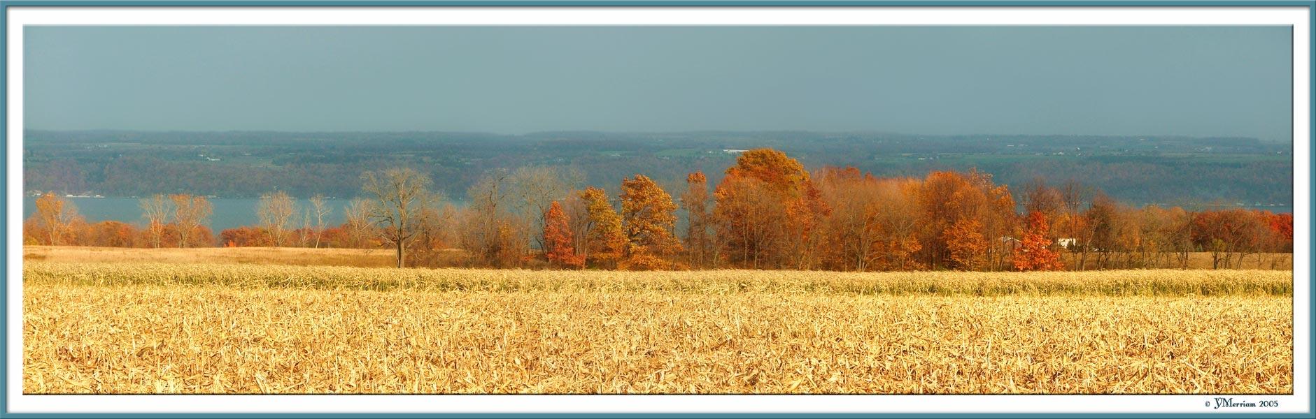 Rural New York
