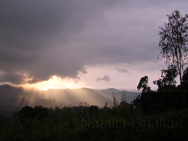 Camerun643.jpg