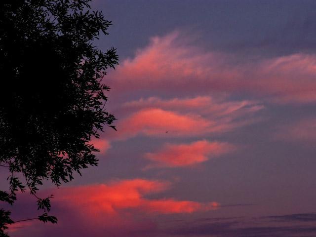 5-21-09 Sunset Glow.jpg