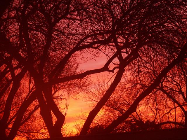2-14-2013 Winter Sunrise.jpg